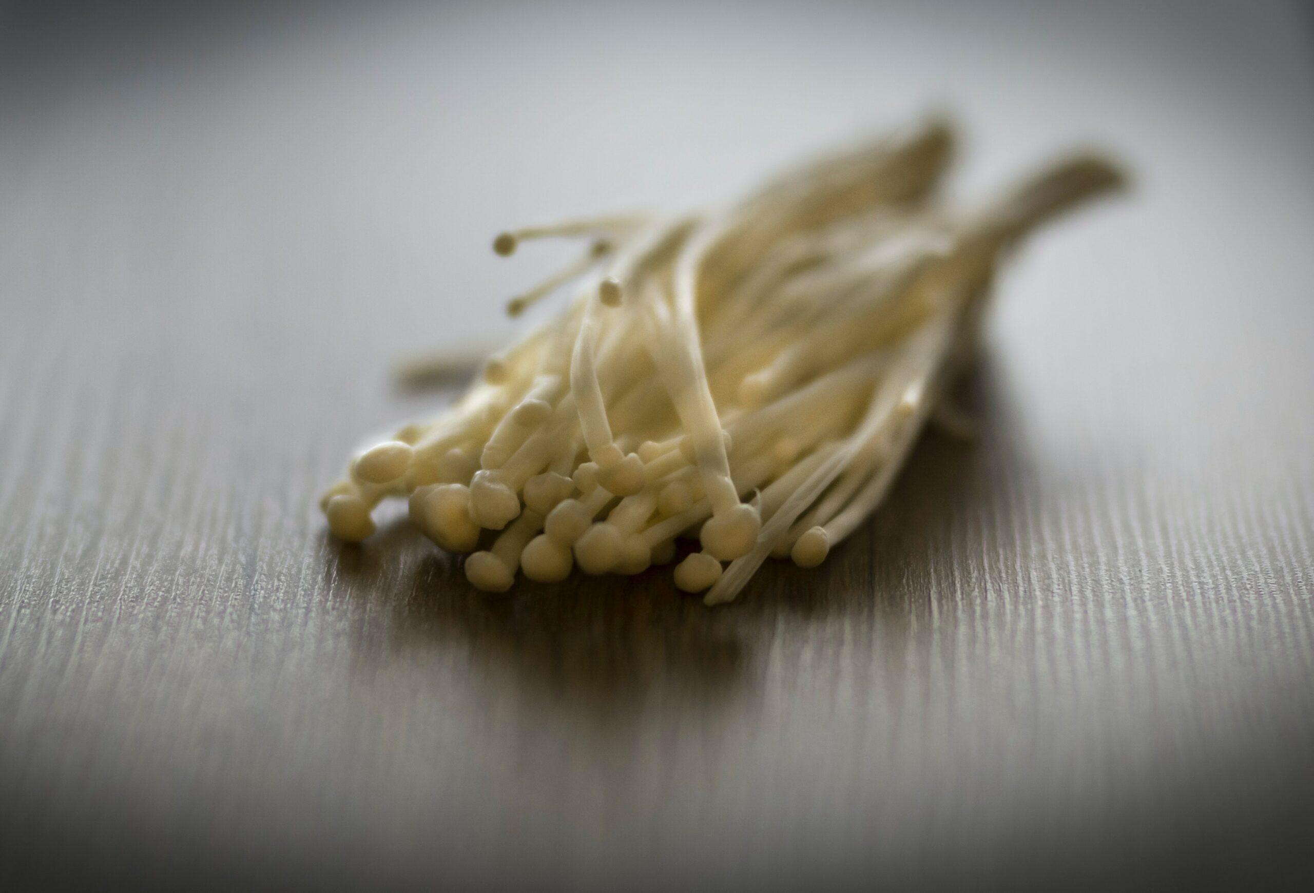 houby, které chutnají, ale i léčí